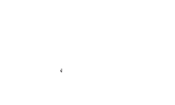 A Touch of Color Photography